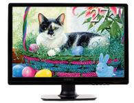 纽索TG272YFA  尺寸:27英寸  屏幕比例:16:9  分辨率:1920X1080  接口类型:15针 D-Sub(VGA),24针 DVI-D  面板类型:TN  点距:0.2715mm  亮度:250cd/m2  典型对比:1000:1  动态对比:60000:1